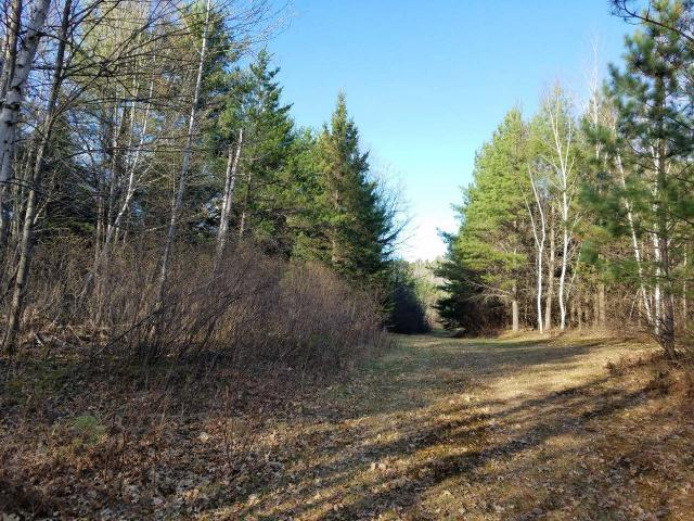 3732 Pine Square Rd, Cassian, WI 54487