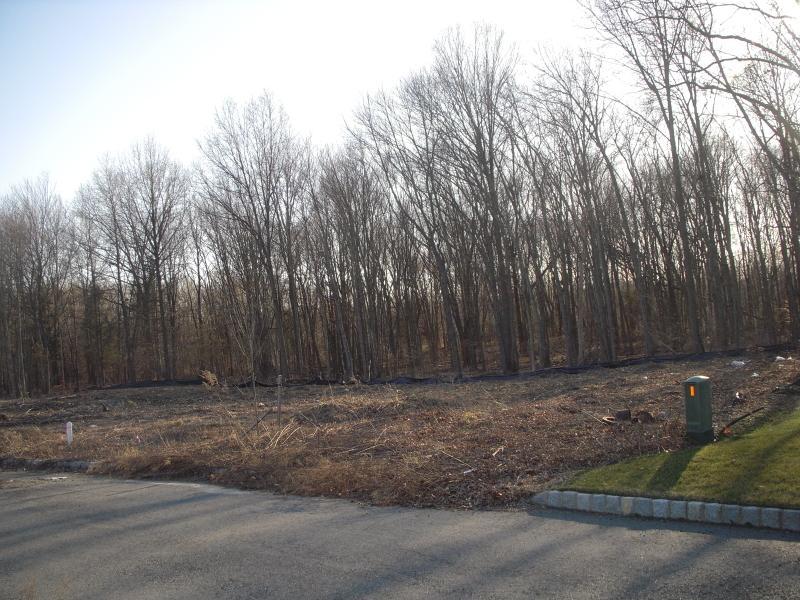 10 Meadow Ct, Montville Township, NJ 07045