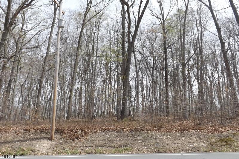 471 Sergeantsville Rd, Delaware Township, NJ 08822