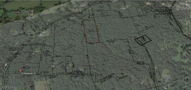 44A Mount Grove Rd-rear, Lebanon Township, NJ 07830