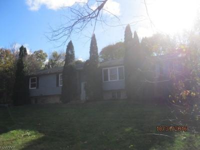 Photo of 202 Birchwood Ln, Hampton Township, NJ 07860