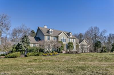Photo of 16 Woodman Ln, Bernards Township, NJ 07920