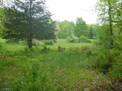 Photo of Ryan Road, Independence Twp.,  07840