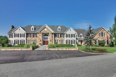 Photo of 875 Larger Cross Rd, Bedminster Township, NJ 07931