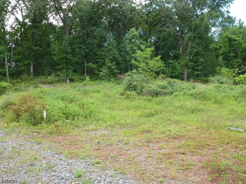 164 Spring Hill Rd, Montgomery Twp.,  08558