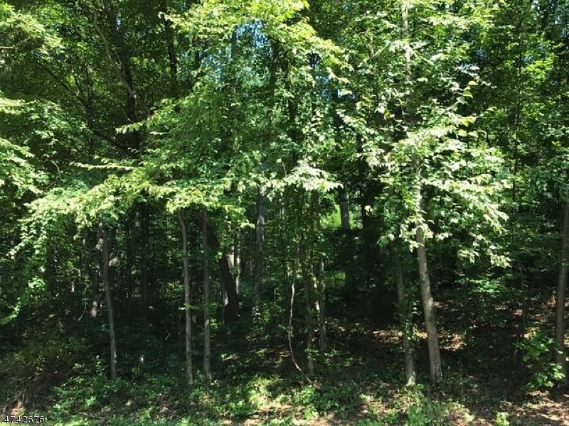 4 Dogwood Ter, White Twp.,  07823