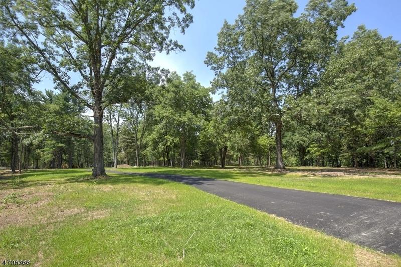 10 Twin Oaks Ln, Harding Twp.,  07976