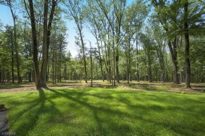 Photo of 29 Twin Oaks Ln, Harding Twp.,  07976