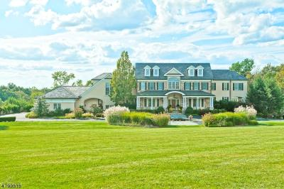 Photo of 131 Harbourton Woodsville Rd, Hopewell Twp.,  08530