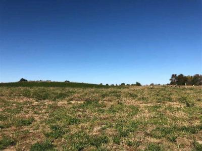 Photo of Lot 21 Mickelson 1st Addition, North Liberty, IA 52317