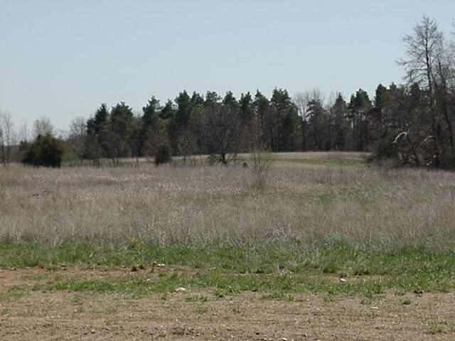 Lot 11 Liberty Woods, Clarklake, MI 49234