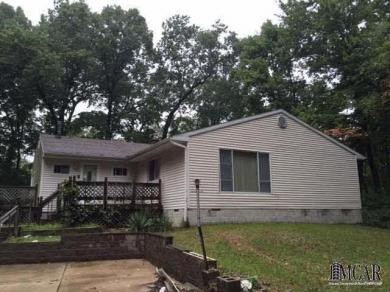 46336 Willow Rd, Belleville, MI 48111