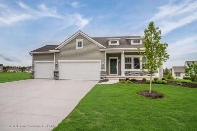 Photo of 10599 Saddlebrook Drive, Grand Ledge, MI 48837