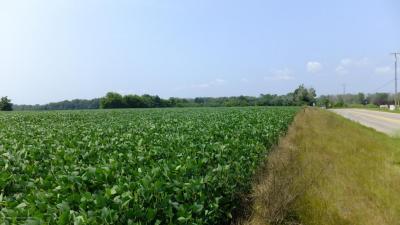 Photo of 301 Linn Rd, Williamston, MI 48895