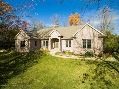 Photo of 13565 Dusty Trail, Grand Ledge, MI 48837
