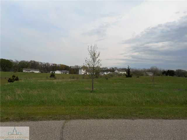 Country River Drive, Rives Junction, MI 49277