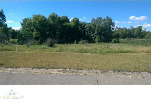 713 Little Creek Path, Perry, MI 48872