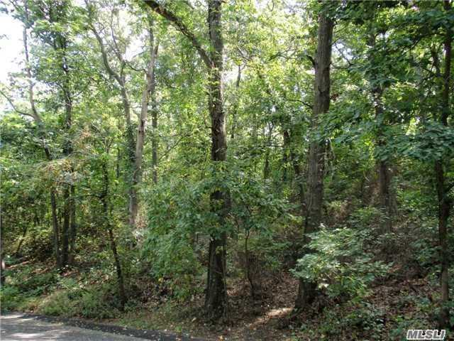 Forest/emerson Rd, Mastic Beach, NY 11951