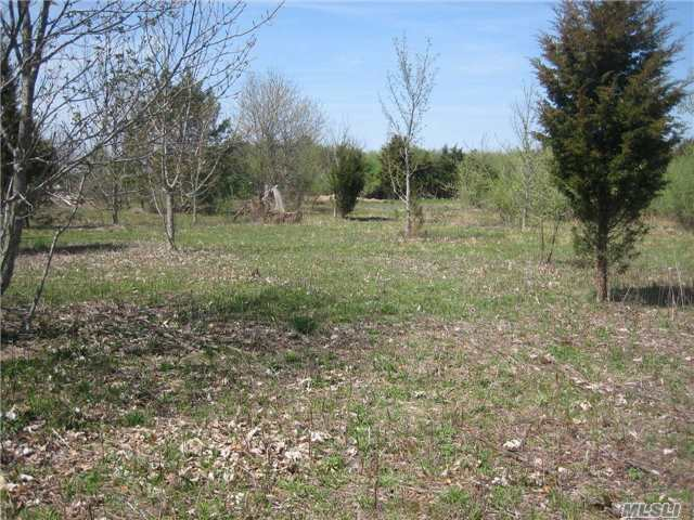 Lot 1350 Hortons Ln, Southold, NY 11971