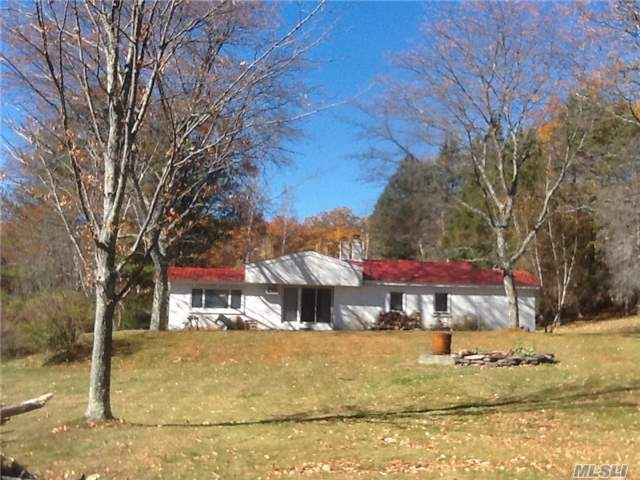 300 Losee Rd, Out Of Area Town, NY 12424