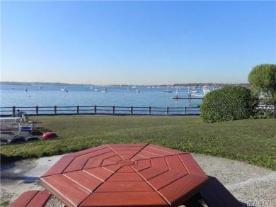 Dolphin Green #D1h, Port Washington, NY 11050