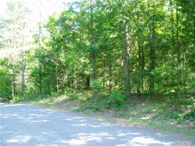 N/A Papermill Rd, Manorville, NY 11949