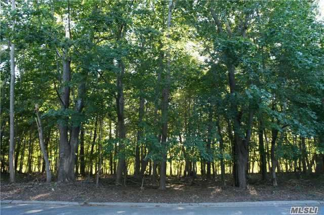 20 Inlet View Path, East Moriches, NY 11940