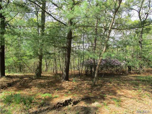 30 Lot 2 Middle Isl Blvd, Middle Island, NY 11953