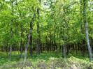 278 Point Of Woods, Hazle Twp, PA 18202