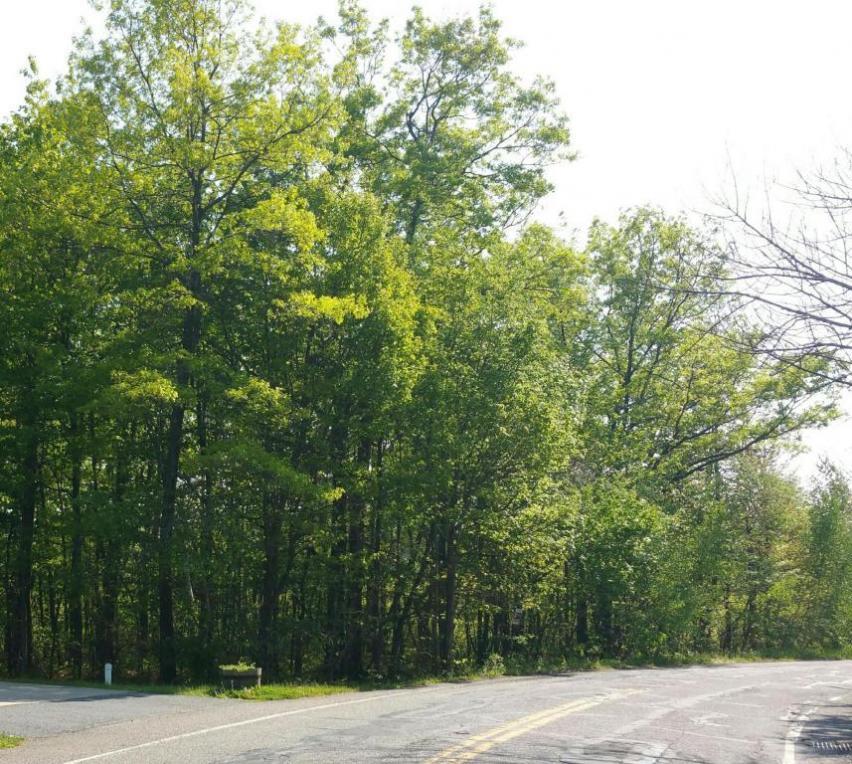 Pardeesville Road, Hazle Twp, PA 18202