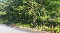 008 Forest Hills Acres, Hazle Twp, PA 18202