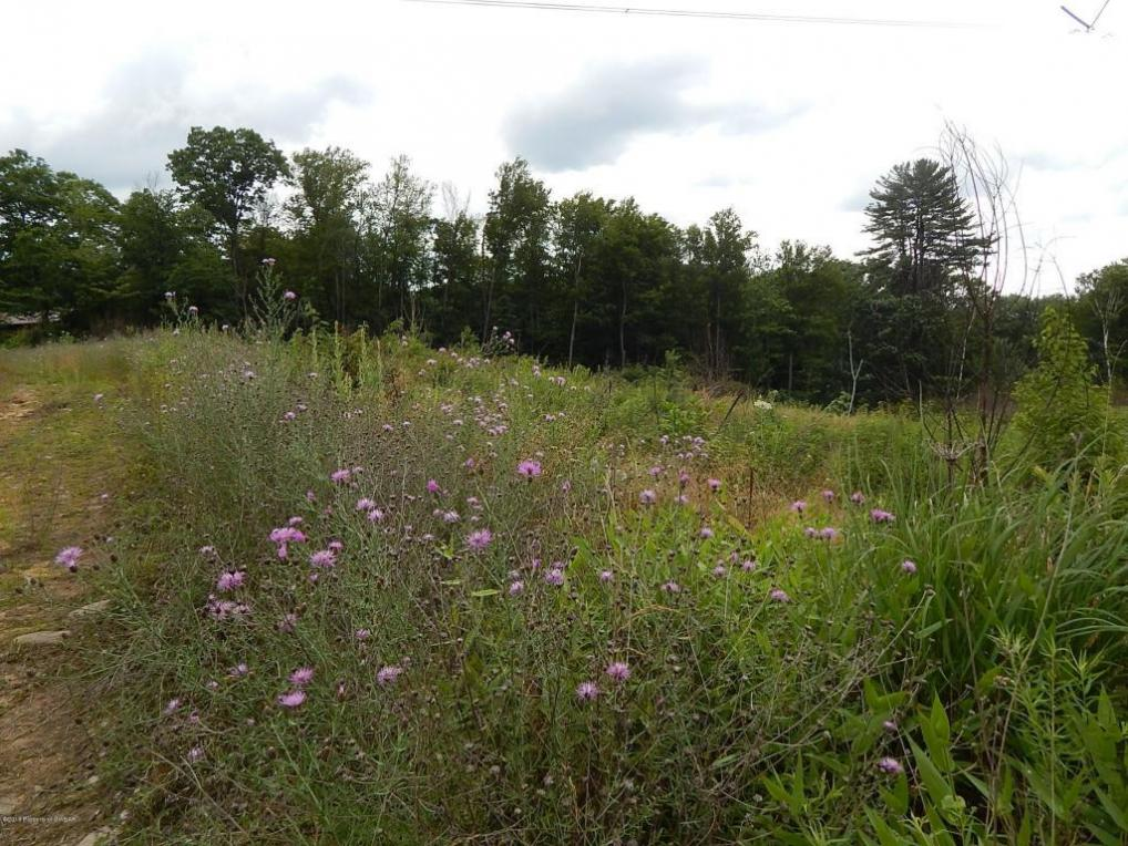 lot #33,34 Towers Street, Shavertown, PA 18708