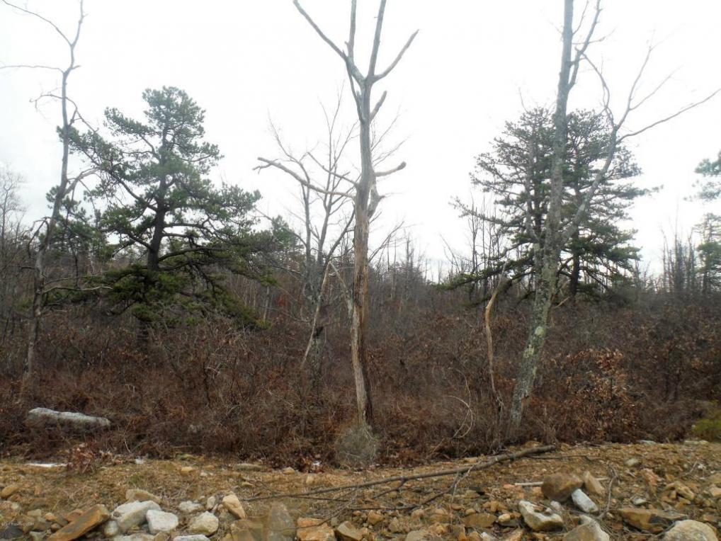 MV 645 Red Mountain Road, Hazle Twp, PA 18202