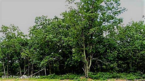 TW 63 Sweet Birch Lane, Hazle Twp, PA 18202