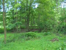 Cragle Hill Rd, Shickshinny, PA 18655