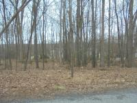 170 Grouse Ridge Ln, Drums, PA 18222