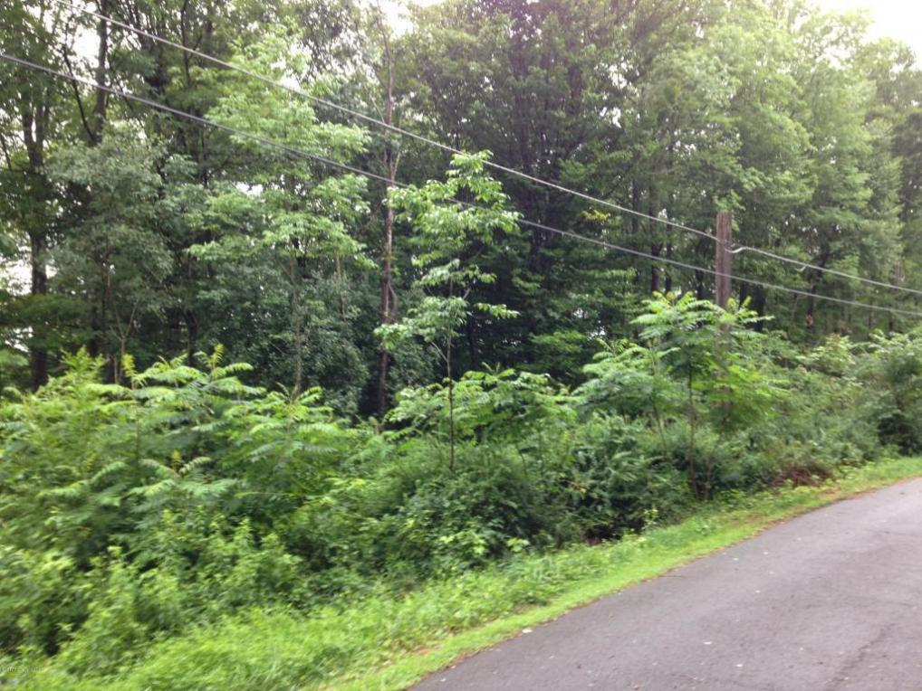 Stolpe Rd, White Haven, PA 18661