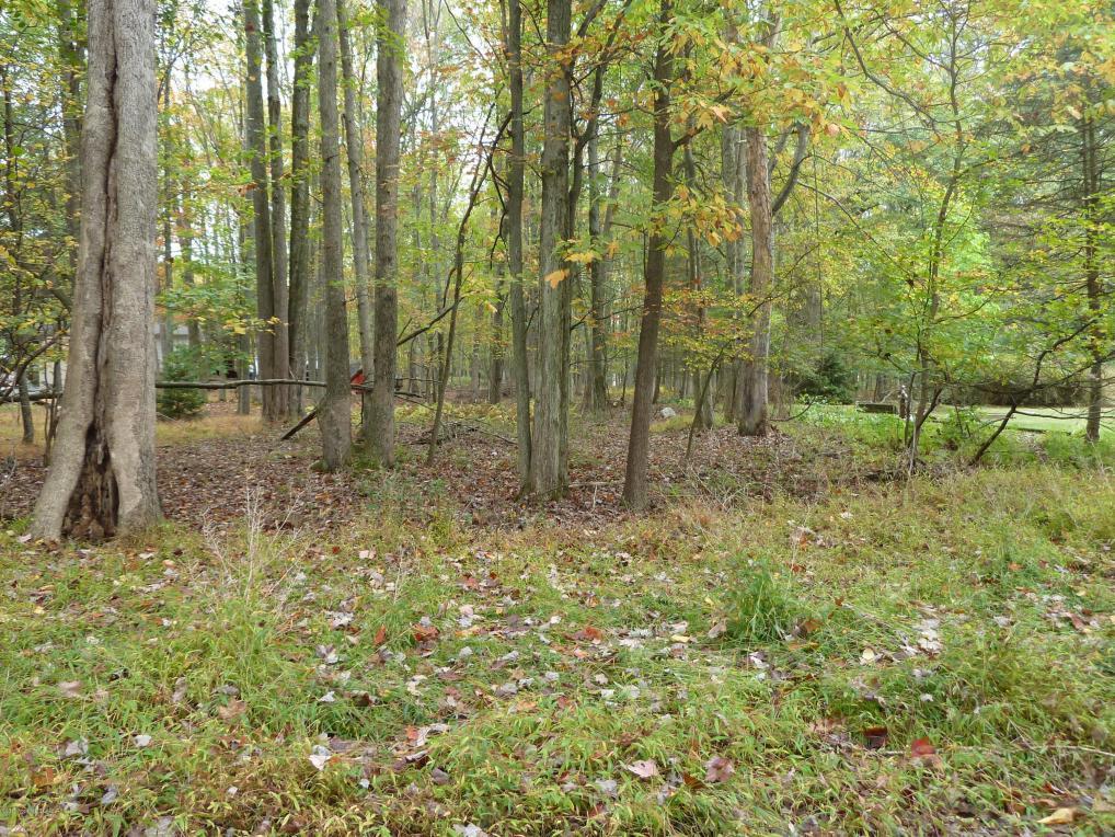Deer Cross Rd, White Haven, PA 18661