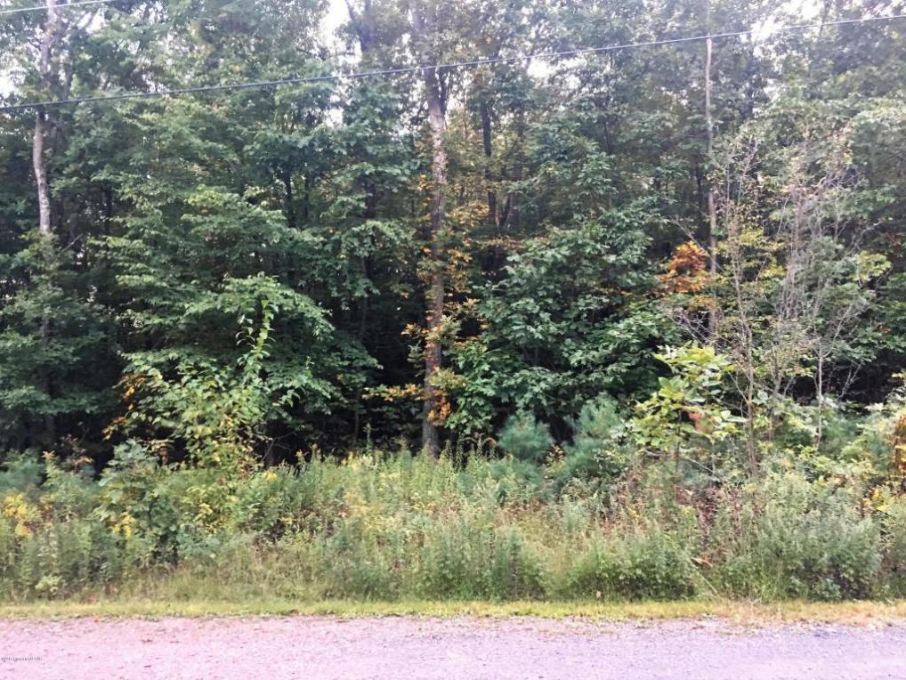 Lot 4 Starview, Wapwallopen, PA 18660