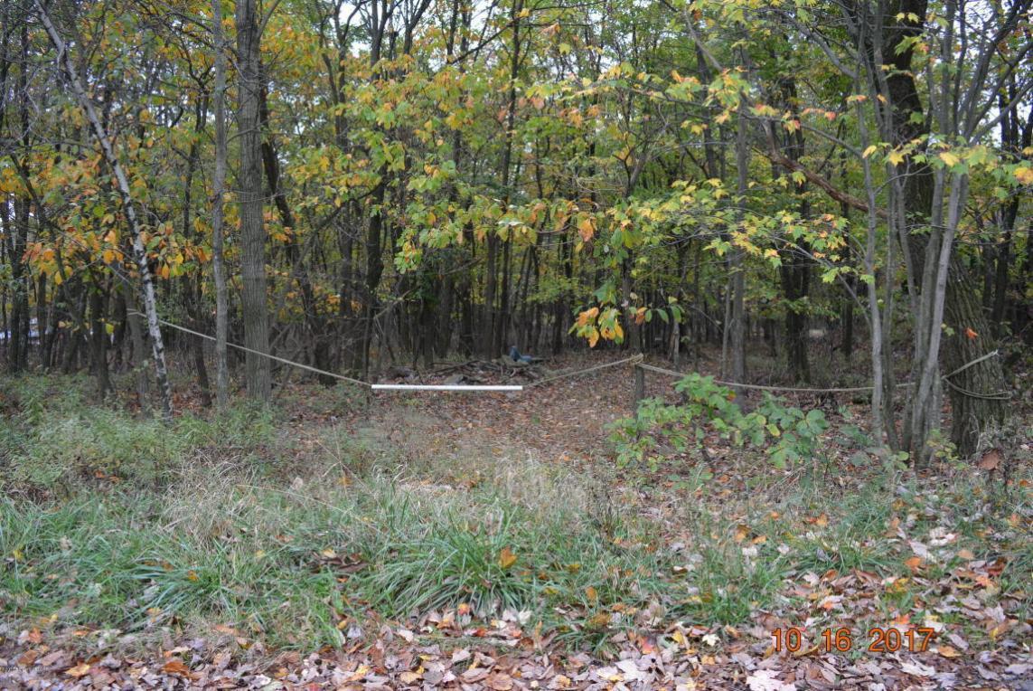 150 Forest Hills Acres Drive, Hazle Twp, PA 18202