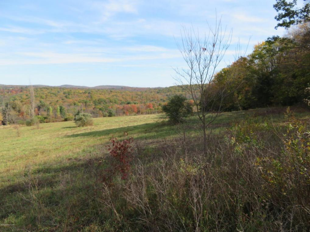Lot 1 Trojan Rd, Hunlock Creek, PA 18621