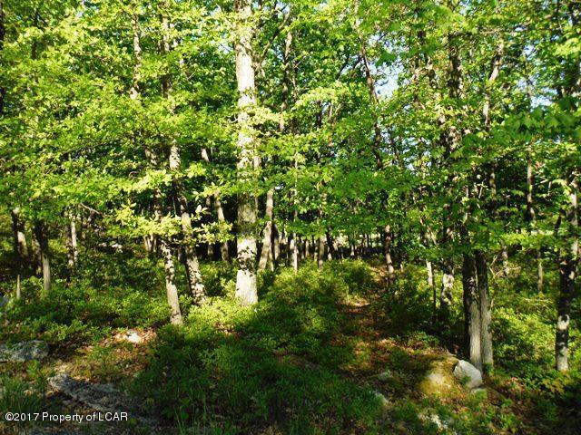 ER II 420 Crooked Stick Lane, Hazle Twp, PA 18202