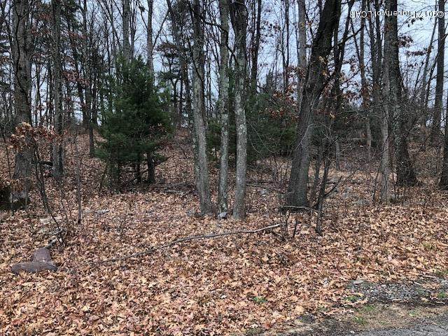 Lot 7 Thomas Drive, Mountain Top, PA 18707