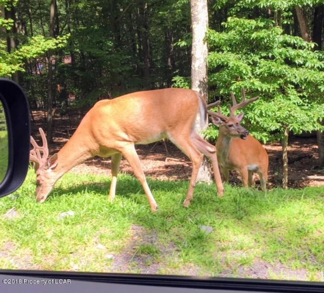 74 Brush Mountain Drive, Hazle Twp, PA 18202