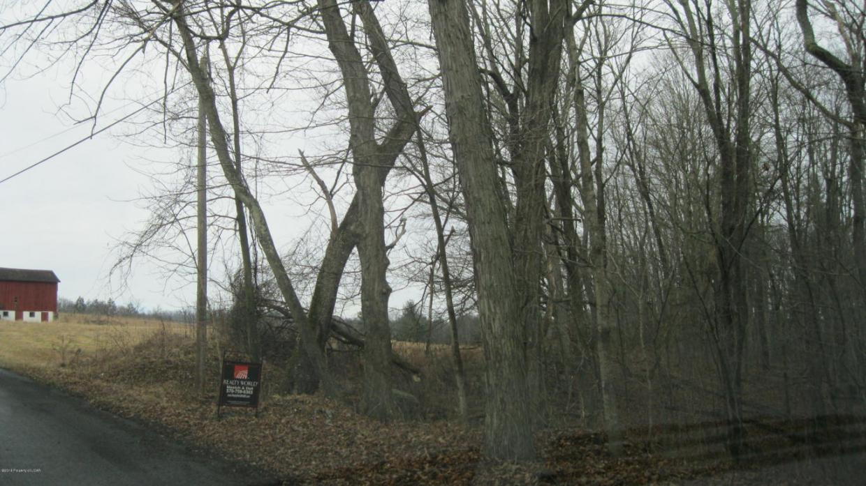 Red Hill Rd, Shickshinny, PA 17814