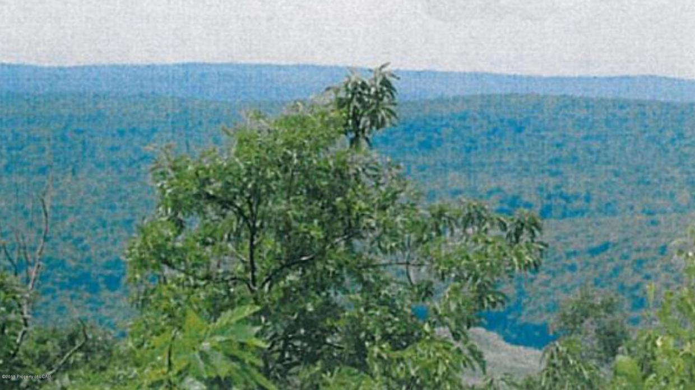 TH-192 Spicebush, Hazleton, PA 18202