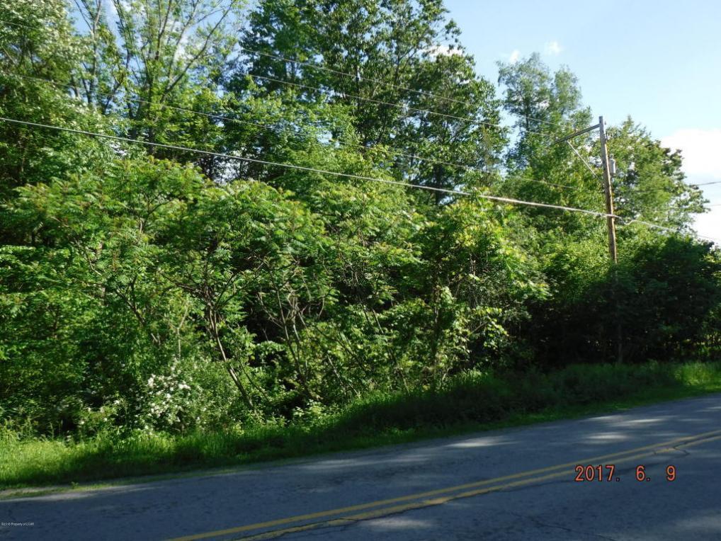 Lower Mill City Rd, Dalton, PA 18414