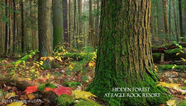 HF4.198 Rolling Creek Dr, Hazleton, PA 18202