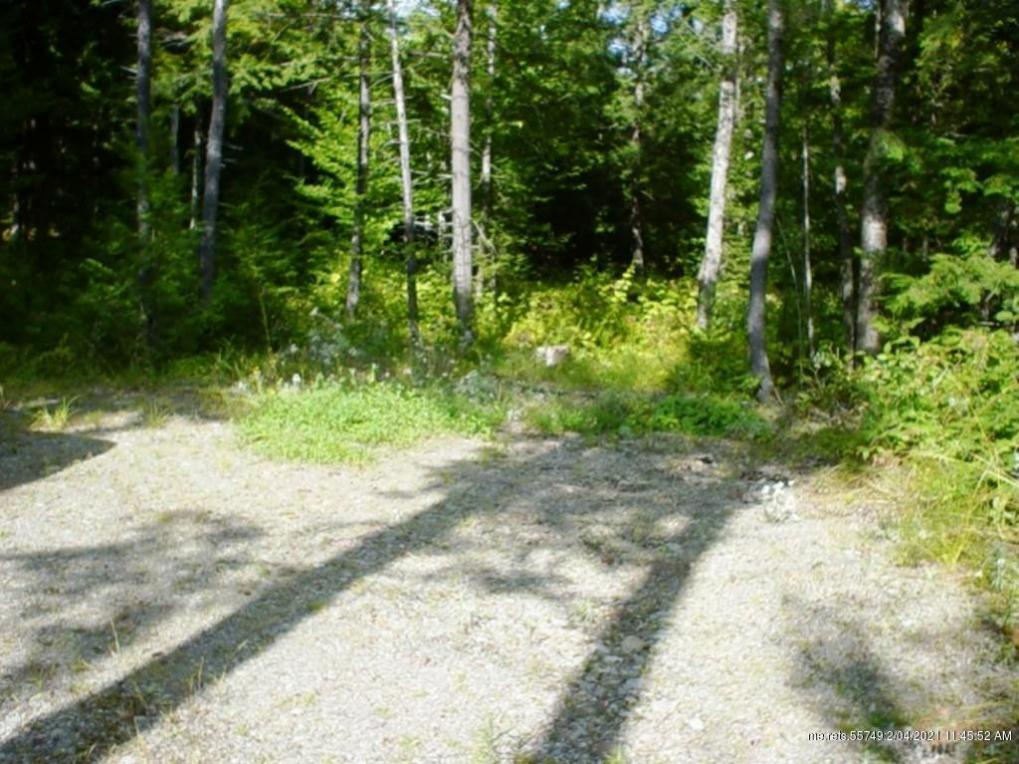 Tbd Bog Road, New Portland, Maine 04961