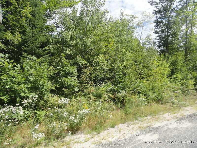 Lot 5 Harbor Hill Road, Woodstock, Maine 04219